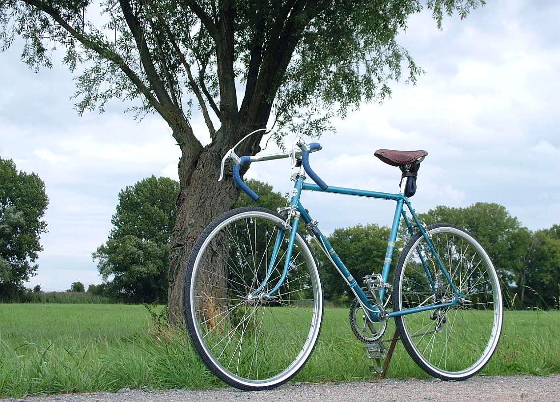 Restauriertes Diamant-Fahrrad - Diamant-Blog
