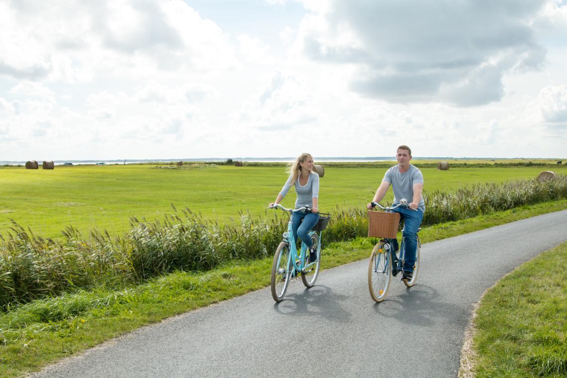 Radfahren auf Föhr - Diamantrad-Blog