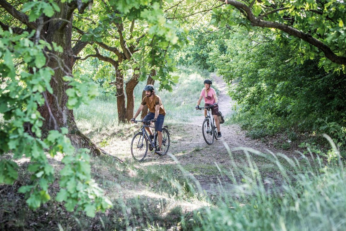Zwei Radfahrer in der Natur - Diamant-Blog