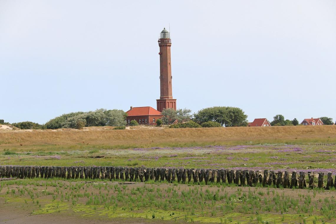 Landschaft auf Norderney - Diamantrad-Blog