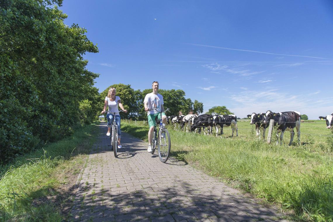 Fahrradfahren in Norden-Norddeich - Diamantrad-Blog