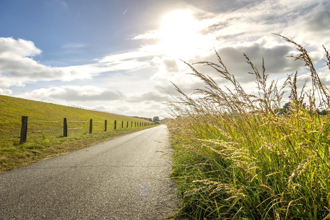 Ein Radweg auf dem Deich - Diamantrad-Blog