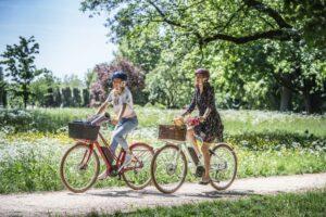 Fahrrad frühjahrsfit machen - Diamantrad