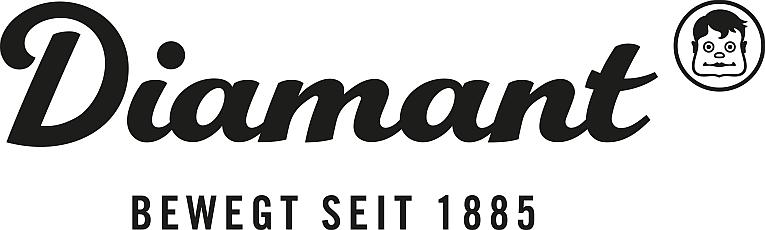 Diamantrad Logo Schriftzug